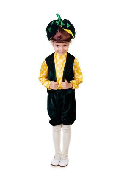 «Каштанчик» карнавальный костюм для мальчика
